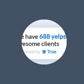Yelp & Google Reviews